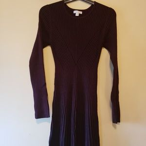 Ribbed form fitting long sleeved dress